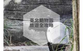 動物園,台北木柵動物園,台北市立動物園