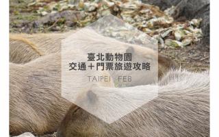 動物園,台北動物園門票,台北市立動物園